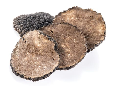 Dried Black Truffle Slices