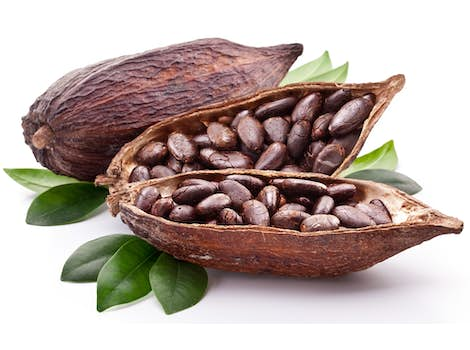 Natural Cocoa Extract